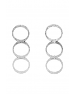 1071-SILVE-1png