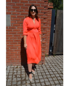 158259-CORAL-1